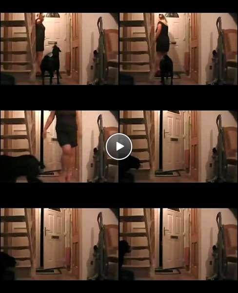 sexy chubby women videos video
